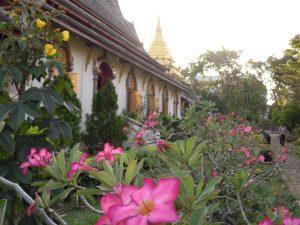 Chiang Mai by Birgit Strauch Shiatsu und Bewusstseinscoach