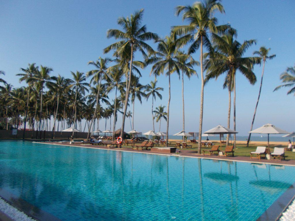 Waikkala Rico Shadow Sri Lanka by Birgit Strauch Shiatsu & ThetaHealing