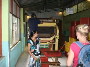 Kandy Teefabrik by Birgit Strauch Shiatsu & ThetaHealing