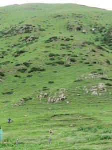 Altyn Arashan Kirgistan by Birgit Strauch Shiatsu & ThetaHealing