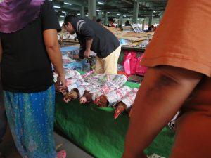 Markt in Sibu Maden Hühner Borneo Sarawak by Birgit Strauch Shiatsu & ThetaHealing