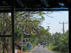 Deniyaya Resthouse Sri Lanka by Birgit Strauch Shiatsu ThetaHealing