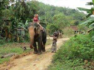Kandy Elefanten Ritt Baden Sri Lanka by Birgit Strauch Shiatsu & ThetaHealing