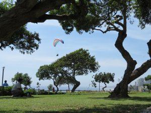 Paragliding Miraflores Lima Peru by Birgit Strauch Shiatsu & Bewusstseinscoaching
