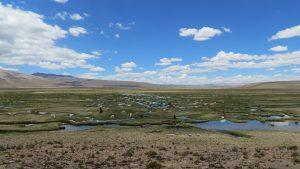 Laguna de Pampa Blanca Vicunjas Peru Chivay by Birgit Strauch Shiatsu & Bewusstseinscoaching