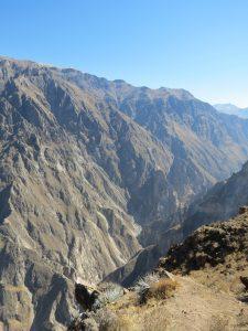 Condore Colca Canyon Maca Yanque by Birgit Strauch Shiatsu & Bewusstseinscoaching