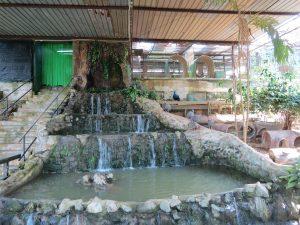 Jong`s Crocodile Farm Sarawak Borneo by Birgit Strauch Shiatsu & Bewusstseinscoaching