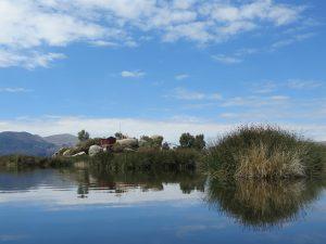 Zeina Ricky Uros Titicaca by Birgit Strauch Shiatsu & Bewusstseinscoaching