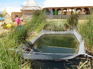 Zeina Ricky Übernachtung Angeln Uros Titicaca by Birgit Strauch Shiatsu & Bewusstseinscoaching