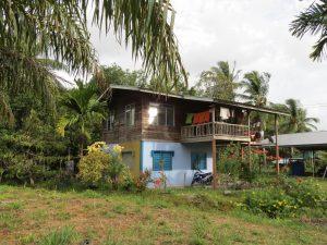 Umgebung Treetops Lodge Miri Sarawak by Birgit strauch Shiatsu & ThetaHealing