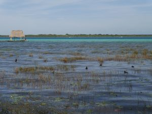 Bacalar Lagune Mexiko by Birgit Strauch Shiatsu & Bewusstseinscoaching