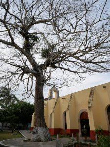 Dorf Bacalar Kirche by Birgit Strauch Shiatsu & Bewusstseinscoaching