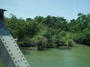 Belize Bus Fahrt Mennoniten Grenze by Birgit Strauch Shiatsu & Bewusstseinscoaching