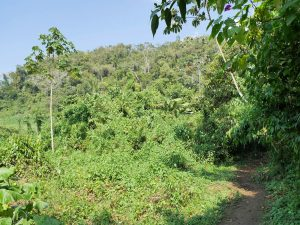 Höhle Bombil Pek Chisec Guatemala by Birgit Strauch Shiatsu & Bewusstseinscoaching