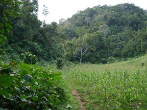 Caves Höhlen Bombil Pek Chisec Guatemala by Birgit Strauch Shiatsu & Bewusstseinscoaching