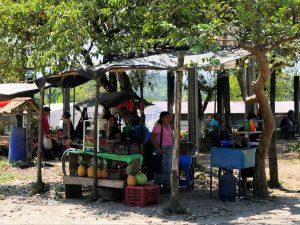 Ananas Von Playa Grande nach Barillas in Guatemala by Birgit Strauch Shiatsu & Bewusstseinscoaching