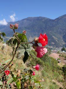 Wandern Casa Familiar in Todos Santos Cuchamatan Guatemala by Birgit Strauch Shiatsu & Bewusstseinscoaching