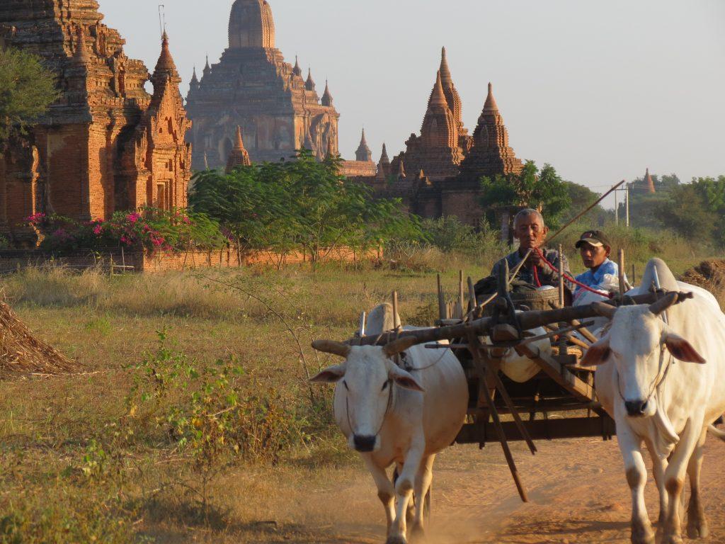 Radtour Bagan by Birgit Strauch Shiatsu & Bewusstseinscoaching