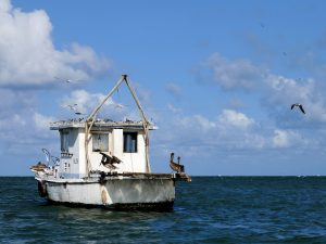 Karibische Meer Bootsfahrt Rio Dulce Livingston by Birgit Strauch Bewusstseinscoaching & Shiatsu