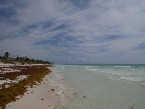 Mezzanine Tulum Strand Mexiko by Birgit Strauch Bewusstseinsscoaching und Shiatsu