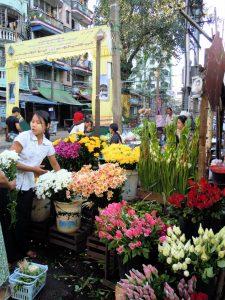 Markt Guest Care Hotel Yangon by Birgit Strauch Bewusstseinscoaching & Shiatsu