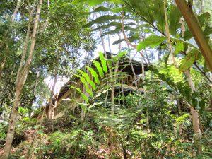 Gem`s Lodge Kelabit Highlands Pa Umor Borneo by Birgit Strauch Shiatsu & Bewusstseinscoaching