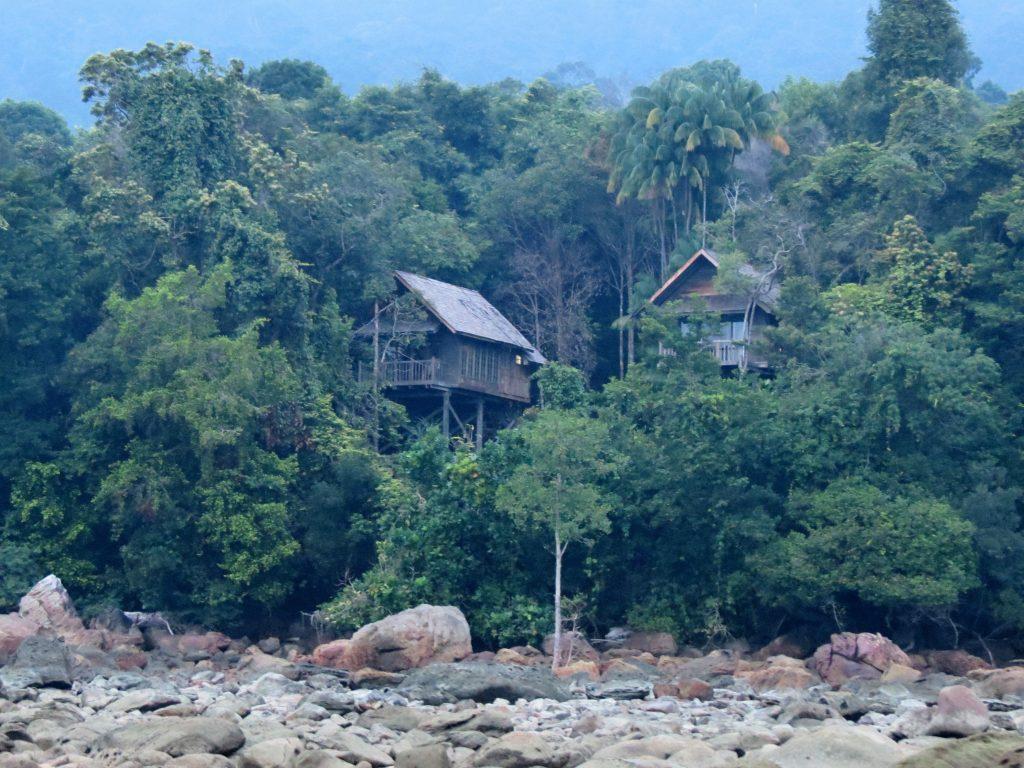 Baumhaus Permai Rainforest Resort Borneo by Birgit Strauch Shiatsu & Bewusstseinscoaching