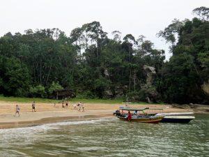 Nasenaffen im Bako Nationalpark Borneo by Birgit Strauch Shiatsu & Bewusstseinscoaching