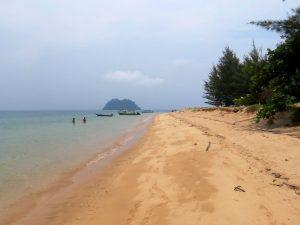 Delphine und Schildkröten Bootstour Santubong Nationalpark Borneo by Birgit Strauch Shiatsu & Bewusstseinscoaching