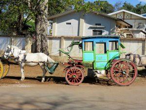 Pferde Kutschen Pyin Oa Lwin Myanmar by Birgit Strauch Lifecoach Bewusstseinscoaching