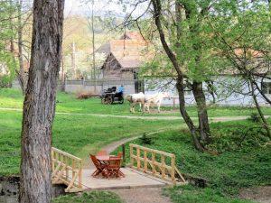 Zabola Landgut Mikes Castle Rumänien by Birgit Strauch Shiatsu & Bewusstseinscoaching