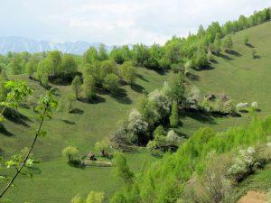 Wandern von Magura Villa Hermani nach Bran Rumänien by Birgit Strauch Shiatsu & Bewusstseinscoaching