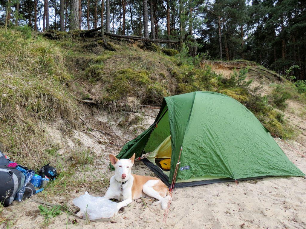 Schlaubetal Helenesee Wandern mit Hund Zelten by Birgit Strauch Bewusstseinscoaching & Shiatsu