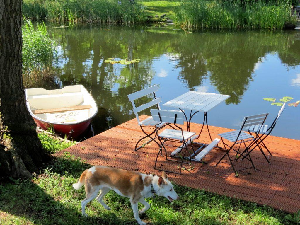 Schlaubetal Friedrich Wilhelm Kanal Wandern mit Hund Zelten by Birgit Strauch Bewusstseinscoaching & Shiatsu
