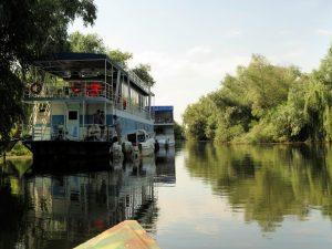 Mila 23 Donaudelta Rumänien by Birgit Strauch ThetaHealing & Life Coaching