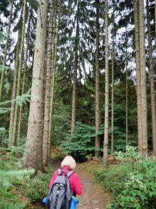 Teutoschleifen Wanderung Canyon Blick by Birgit Strauch Bewusstseinscoaching & Shiatsu