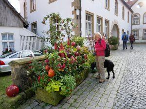 Tecklenburg Kostbar Bio Pommes by Birgit Strauch Bewusstseinscoaching & Shiatsu