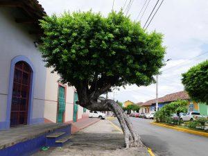 Granada Nicaragua by birgit Strauch Shiatsu & Bewusstseinscoaching