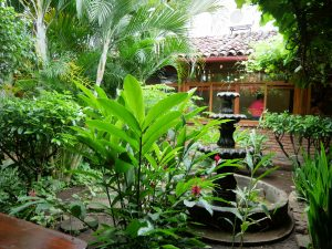 Pita Pita Granada Nicaragua by birgit Strauch Shiatsu & Bewusstseinscoaching