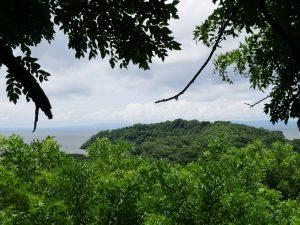 Charco Verde Ometepe Nicaragua Schmetterlinge by Birgit Strauch Bewusstseinscoaching & Meditation