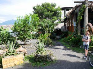 Santo Domingo Vogel Pferd Restaurant by Birgit Strauch Bewusstseinscoaching & Shiatsu