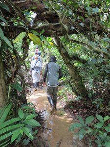 Wanderung Indio Maiz Nationalpark by Birgit Strauch Bewusstseinscoaching & Shiatsu