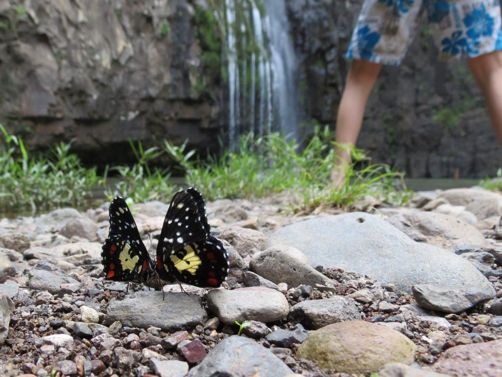 Tisey Wasserfall bei Esteli by Birgit Strauch Bewusstseinscoaching & Shiatsu