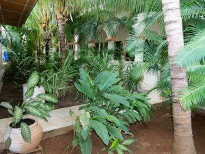 Hotel Los Arcangeles in Juigalpa Nicaragua by Birgit Strauch Shiatsu & Bewusstseinscoaching
