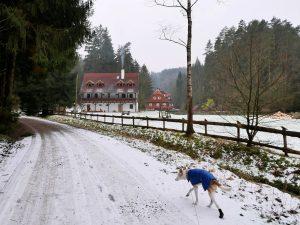 Unterwegs im Minicamper Stary Mlyn Böhmische Schweiz by Birgit Strauch Bewusstseinscoaching & Shiatsu