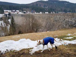 Schwarzenbach Talsperre mit dem Minicamper by Birgit Strauch Bewusstseinscoaching & Shiatsu