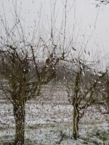 Regen im Minicamper by Birgit Strauch Bewusstseinscoaching & Shiatsu