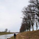 Abschied von dem Lieblingshund by Birgit Strauch