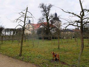 Mit dem Minicamper bei Hundisburg by Birgit Strauch Bewusstseinscoaching und Shiatsu