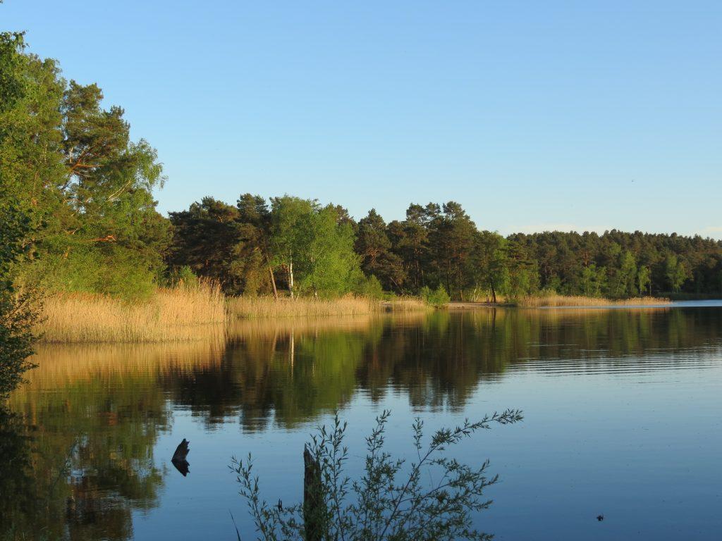 Dürings Campingplatz am Tonsee mit dem Minicamper by Birgit Strauch Bewusstseinscoaching